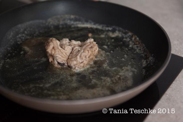 Tania Teschke Photography-cervelle rebecca-1675